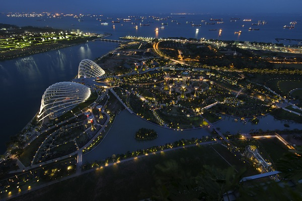 Urban and Landscape Lighting_Gardens by The Bay, Marina South_1