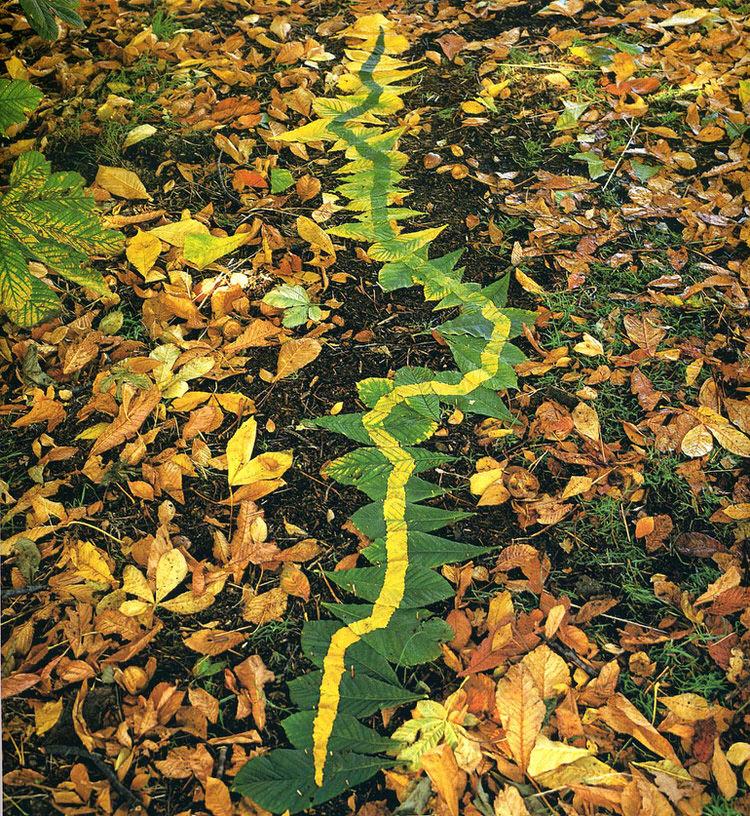 land-art-andy-goldsworthy-14